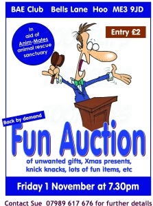 fun auction 2013